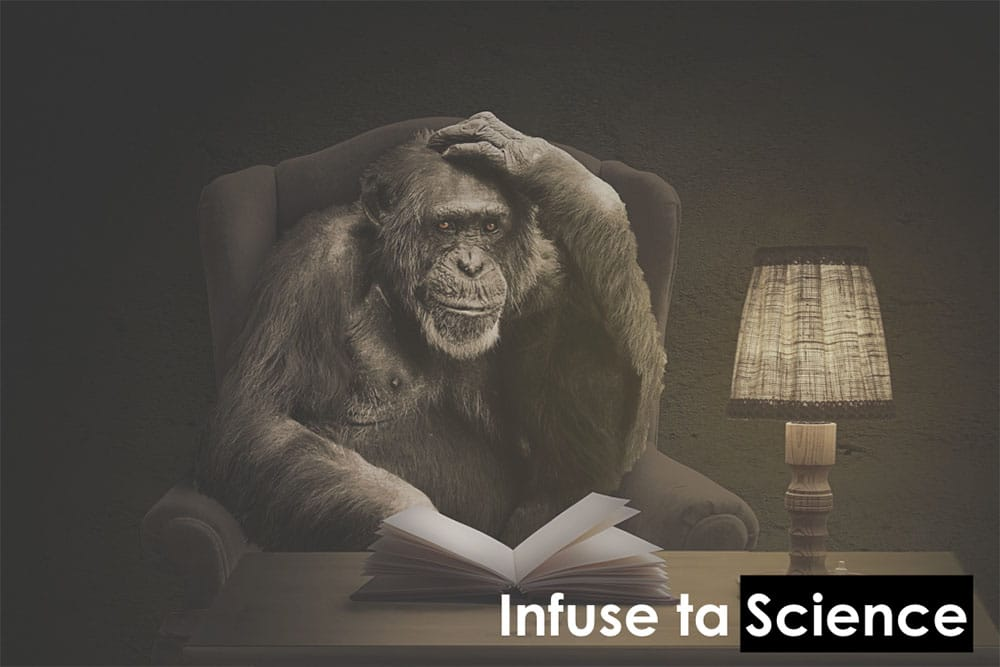 Infuse ta Science