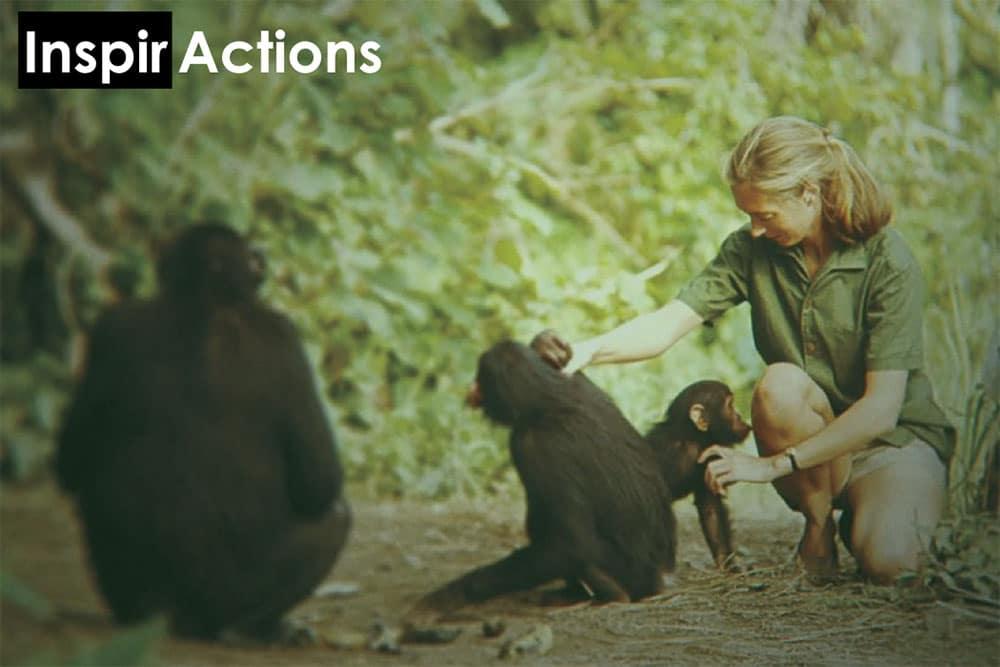 Inspir Actions