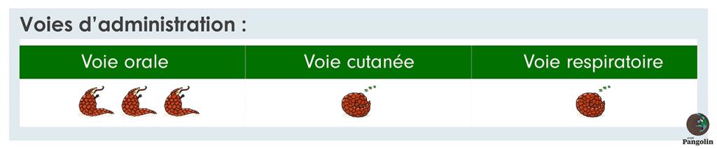 Administration huile essentielle de Clou de Girofle