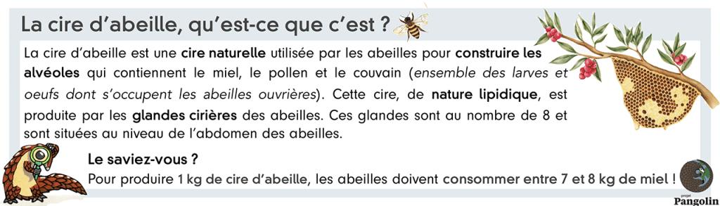 Définition de la cire d'abeille