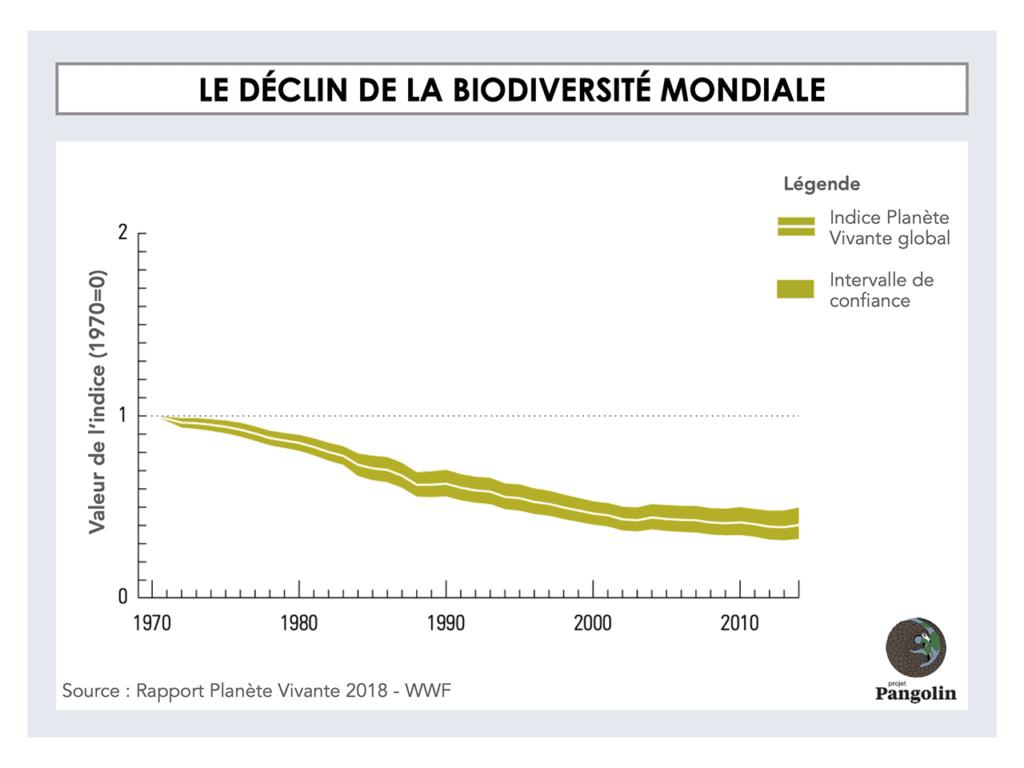Le déclin de la biodiversité mondiale