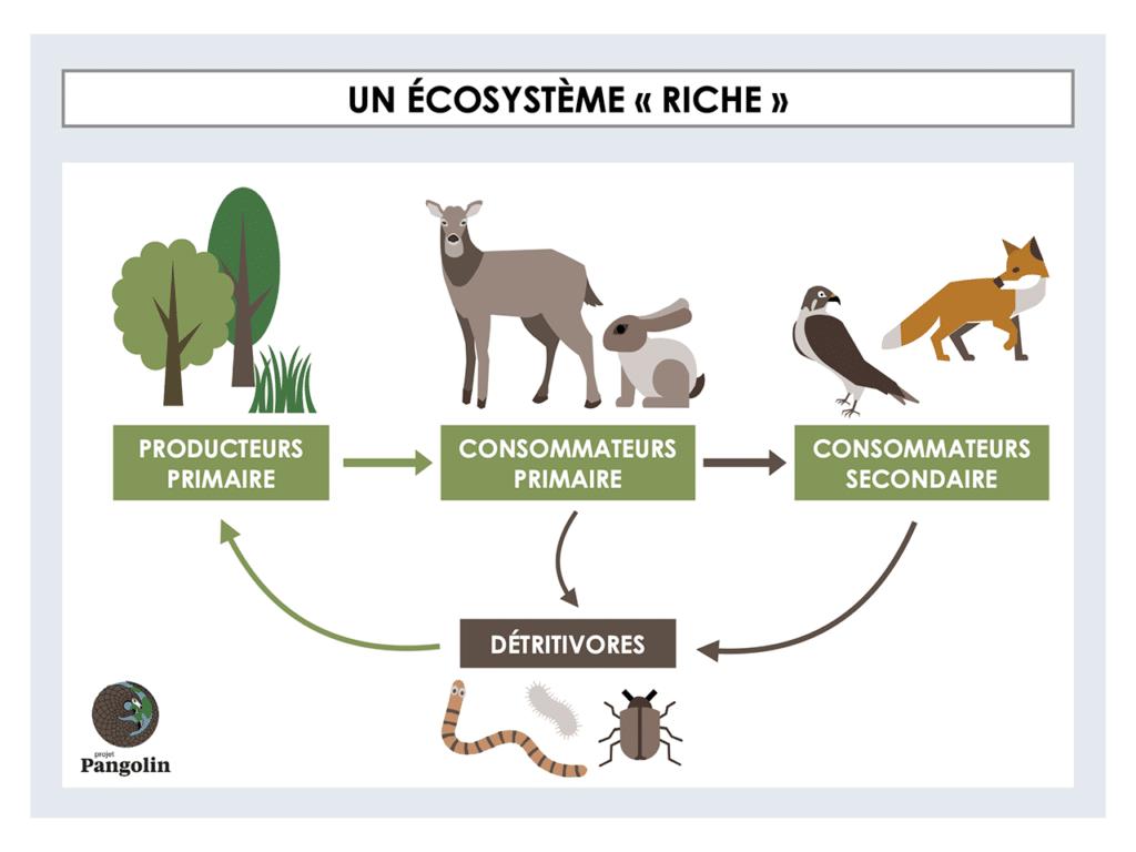 """Un écosystème """"riche"""""""