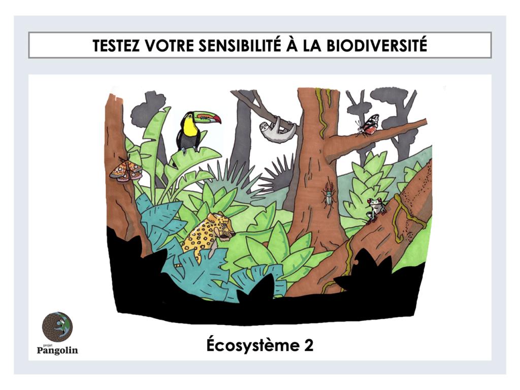 Testez votre sensibilité à la biodiversité