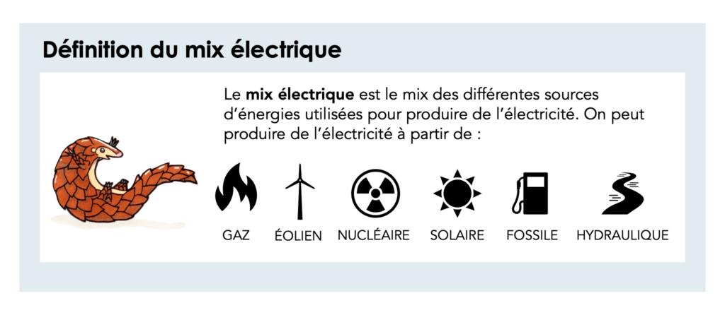 mix-électrique-écotourisme